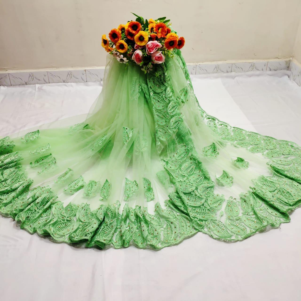Function Light Green Color Festive Wear Mono Net Chain Stitch Hand Stone Work Saree Blouse For Ladies