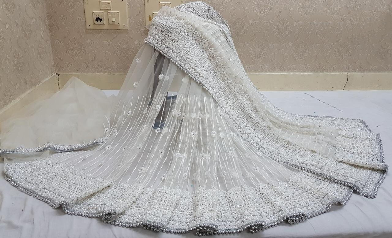 Wedding Off White Color Party Wear Net Steel Stone LCD Embroidered Pandadi Jarkhan Work Saree Blouse