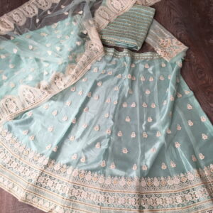 Astonishing Light Blue Color Fancy Lucknowi Work Soft Net Lehenga Choli for Women